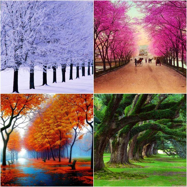 seasonsoflife2