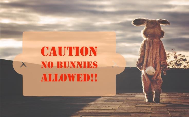 BunnyDontcross2