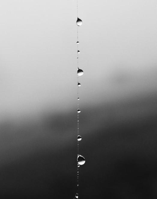 raindropstring