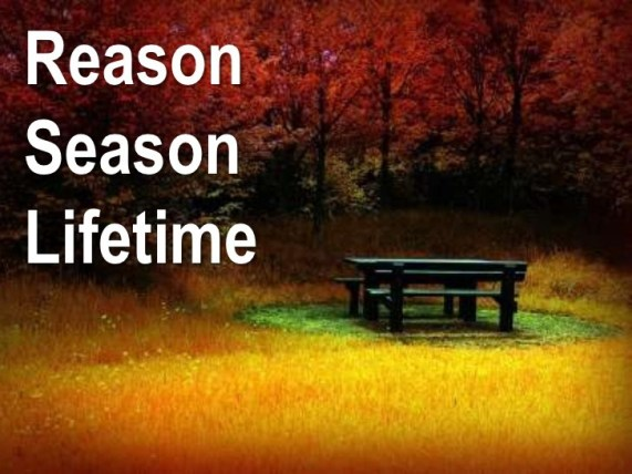 reason-season-and-lifetime-1-728